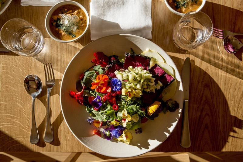 Aro Ha guests eat 140 different plant species over their five night stay.