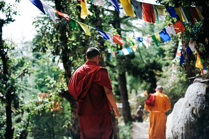 Visiting Darjeeling provides chance to try the famous tea and explore Buddhist monasteries.